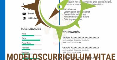curriculum-vitae-con-imagen