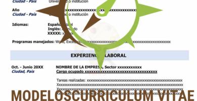 curriculum-vitae-en-blanco-p1