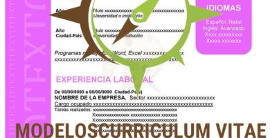 curriculum-vitae-modulable-morado-p1