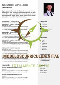 curriculum-vitae-sindical