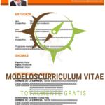 curriculum-vitae-sindical-naranja-p1
