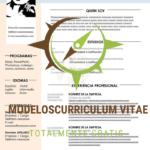curriculum-vitae-suave