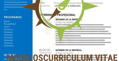 curriculum-vitae-sutil