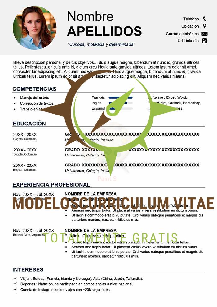 curriculum-vitae-universitario